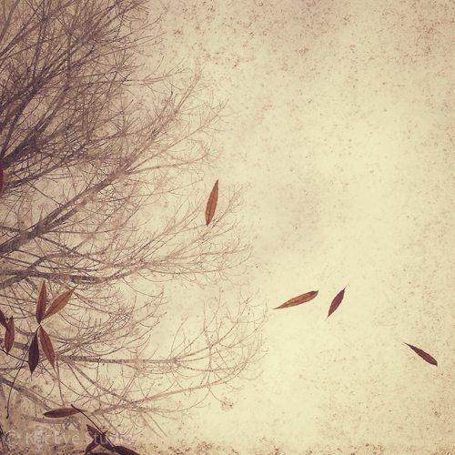 Memory of Autumn - by Kat Sloma